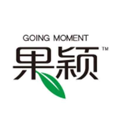 GOING MOMENT 果颖